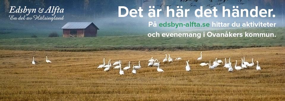 Edsbyn & Alfta - en del av Hälsingland